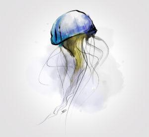 06 octobre 2019 - test adobe fresco - dessin - vivien - durisotti - design - experience - un - jour - un - dessin