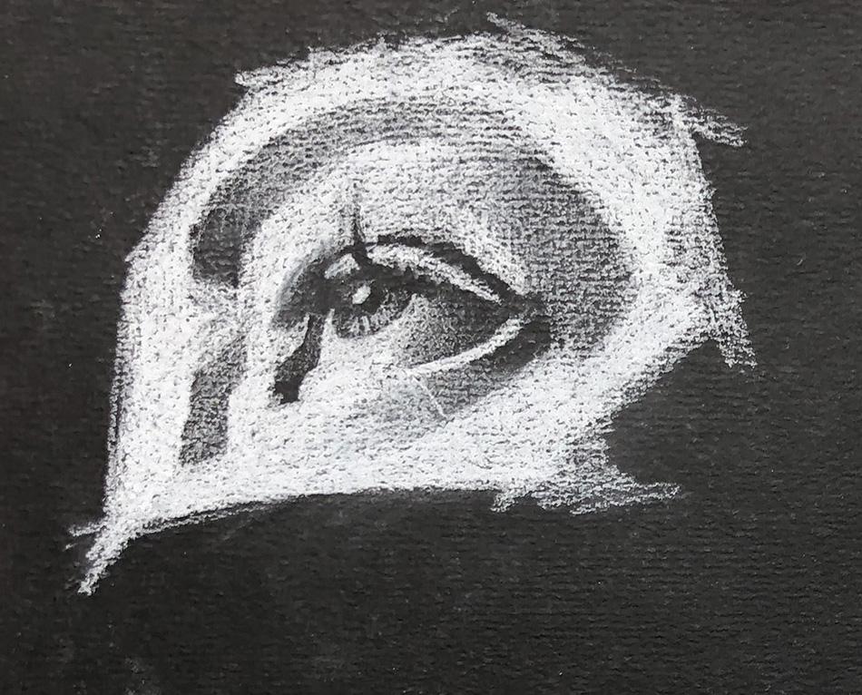 dessin - académique - pastel - crayons - école - nature - morte
