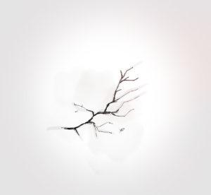 10 mai 2021 - fracture !!! - durisotti - design - experience - un - jour - un - dessin - dessin - vivien - durisotti - design - experience - un - jour - un - dessin