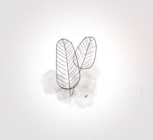 15 mai 2021 - jardinage !!! - durisotti - design - experience - un - jour - un - dessin - dessin - vivien - durisotti - design - experience - un - jour - un - dessin