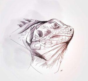 30 - avril - 2020 - iguana - yachts - dessin - sketch - vivien - durisotti - design - experience