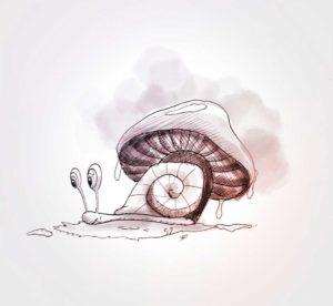 8 - mai - escargot - dessin - vivien - durisotti - design - experience