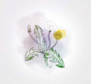 04 octobre - en mode desherbeur - dessin - vivien - durisotti - design - experience - un - jour - un - dessin - dessin - vivien - durisotti - design - experience - un - jour - un - dessin