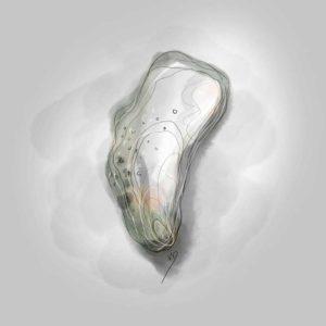 21 août - 1ère huître - dessin - vivien - durisotti - design - experience - un - jour - un - dessin - dessin - vivien - durisotti - design - experience - un - jour - un - dessin